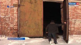 Организатор кражи 23-х тонн семян подсолнечника получил срок
